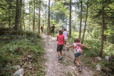 Alpe Cimbra Trekking nei boschi