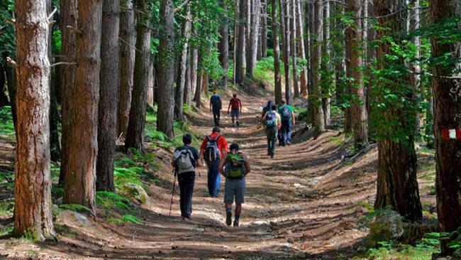 Gruppo di escursionisti sul sentiero Brigante