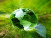 Biodiversità ed ecosistemi, allarme dalle Nazioni Unite