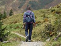 Perché il turismo green è il futuro