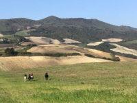A cavallo nei dintorni di Addadia (foto: L. Varalla © Mondointasca.it)