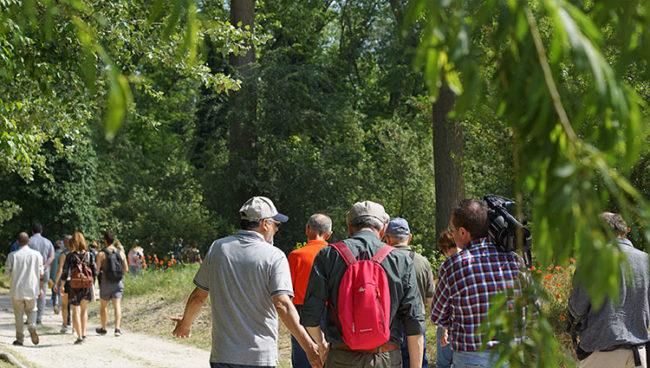 Il percorso nel Bosco Nordio che porta alla Land-Art