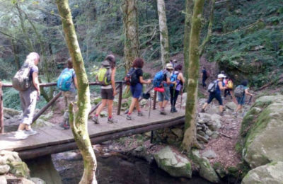 turisti-nel-parco