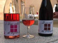 Ambierle, i vini del Domaine des Palais (Ph. D. Bragaglia ©Mondointasca.it)