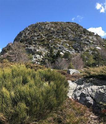 Ardèche. Il-Mont Gerbier de Jonc dove nasce la Loira