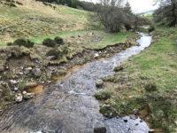 Ardèche. Una delle piccole sorgenti attorno al Mont Gerbier de Jonc che danno vita alla Loira (Ph. D. Bragaglia ©Mondointasca.it)