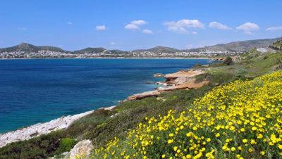 Grecia Attica_Varkiza_22_SPavlidis