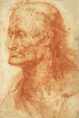 da Tiziano a Rubens_Head-Study-of-an-old-man