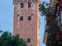 Torre Giunigi sormontata da lecci (foto: © emilio dati - Mondointasca.it)