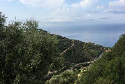 Elba-paesaggio