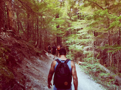 valigia hiking -tra-i-boschi