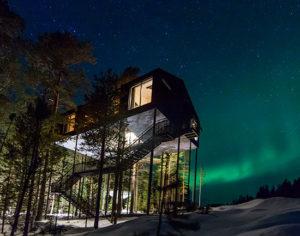 Una casa sull'albero nella foresta per ammirare l'Aurora boreale
