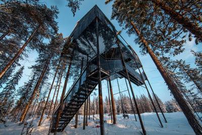 Treehotel-camera-sugli-alberi-