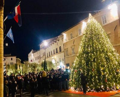 Natale ad Assisi Eco-albero