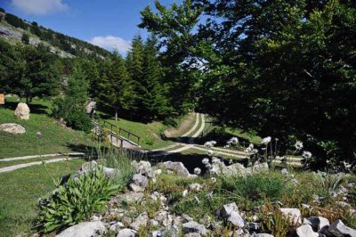 Capracotta Giardino di Flora Appenninica - credit Carmen Giancola