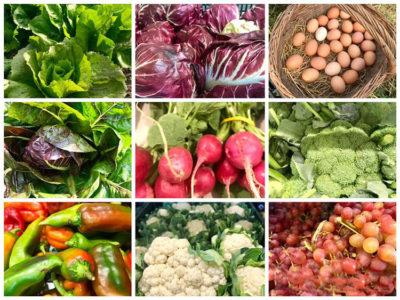 sviluppo rurale prodotti-della-cooperativa-Caresà