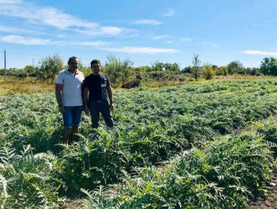 sviluppo rurale i fratelli Finottello, Sapori di Sant'Erasmo