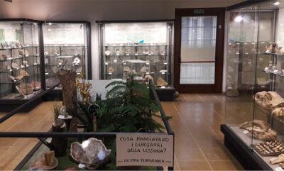 Museo-di-Camposilvano