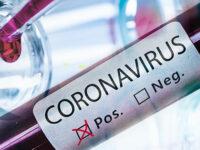 Virus e dintorni: informazione ed esperti anche a proposito di viaggi