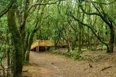 Parco rurale di Anaga
