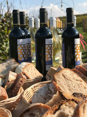 Vini-della-Cantina-Destefanis