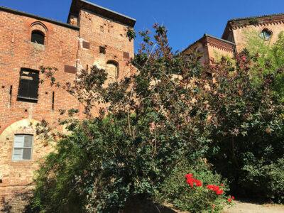 Monferrato Giarole-Castello-Sannazzaro (Foto: F.D. Scotti © mondointasca.it)