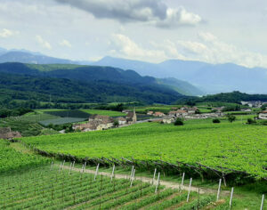 Alto Adige vista della vallata vicino a Caldaro