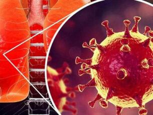 Human virus exibition