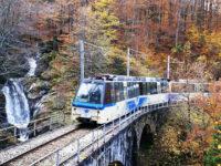 Treno del Foliage: ammirare la magia dell'autunno dal finestrino