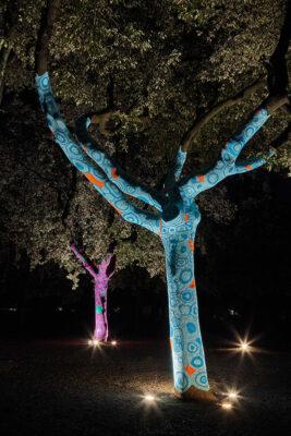 Accademia Aracne Yarn Bombing Sculture variopinte sugli alberi