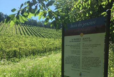 Paesaggi d'Italia Bosco-dei-Pensieri Villaggio-Fontanafredda