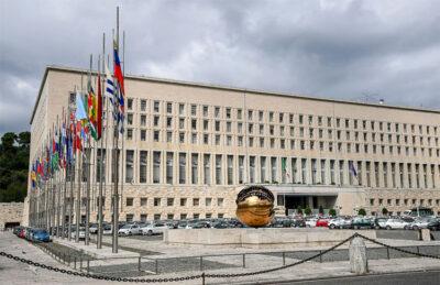 Ministero-affari-esteri e della cooperazione