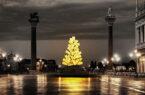 albero della vita Natale-di-luce-a-Venezia