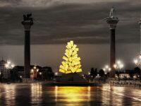 L'Albero della Vita per il Natale di Luce a Venezia