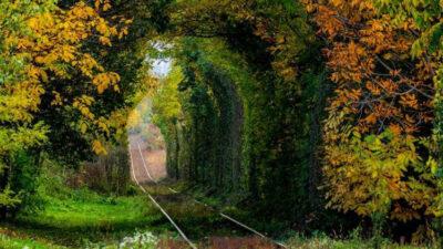 Vladm_photography_Romania