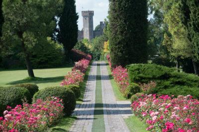 parco giardino sigurta-viale-fiorito