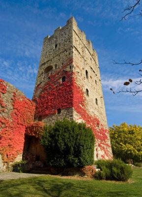 Castello-di-Porciano