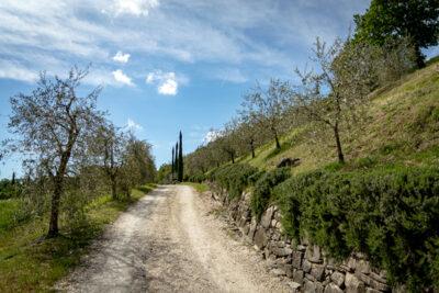Passeggiata-in-Umbria