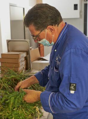 Chef-Antonio-Ercole-Santarella sceglie le sue erbe (ph. © 2021 emilio dati)