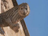 Particolari simbolici della facciata della Cattedrale (ph. © 2021 emilio dati)