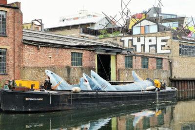 Regent's Canal Sharks!-di-Jaimie-Shorten