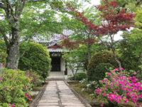 Kyoto, tempio Zen di Tenryu ji Kyoto (ph. b. andreani © mondointasca.it)