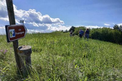 Camminatori-sulla-Via-Francigena_credits-AEVF