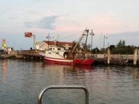 Delta del Po Marina di Porto Levante (foto p.ricciardi © mondointasca.it)