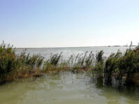 La laguna e il mare (foto p.ricciardi © mondointasca.it)