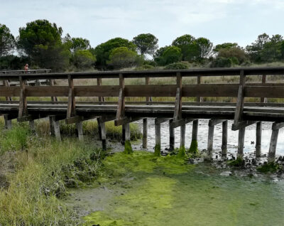 Adria Giardino-Botanico-Litoraneo-veneto