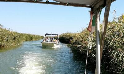 In-barca-tra-le-canne-in-laguna-ph-p.ricciardi-c-mondointasca.it