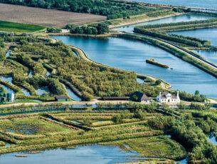 Parco Delta del Po Veneto, Via delle valli nord, valle Veniera, Rosolina
