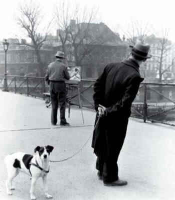 Robert-Doisneau-Fox-Terrier