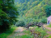 Orsigna Ponte di Leonardo da Vinci e Molino Giamba